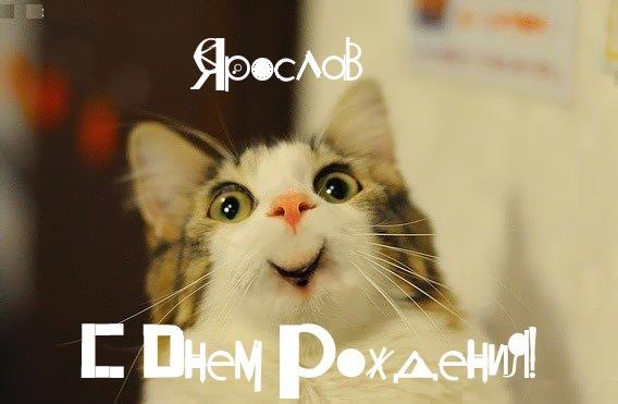 Смешная картинка с Днем Рождения Ярослав