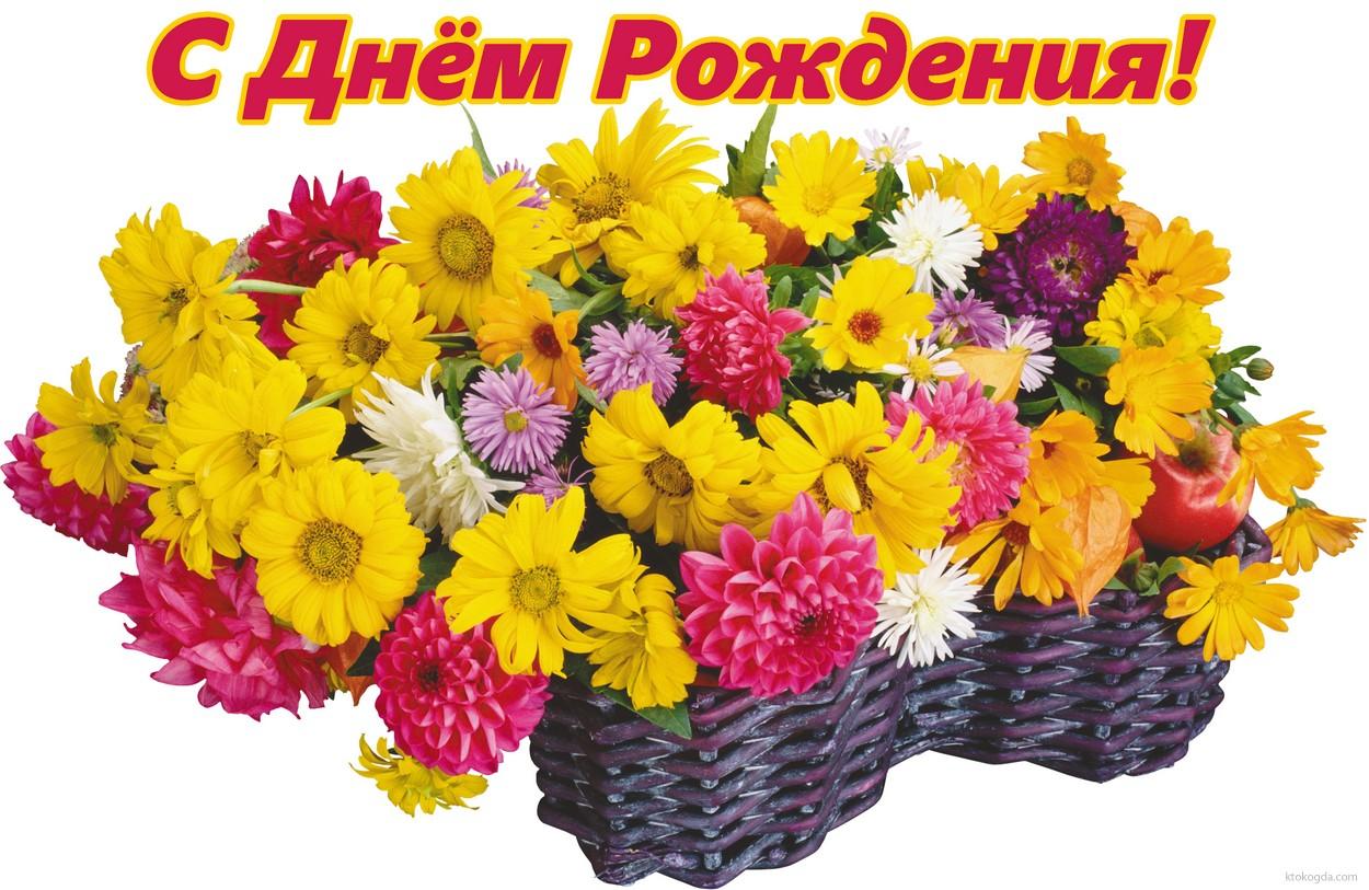 Картинки осенние цветы скачать